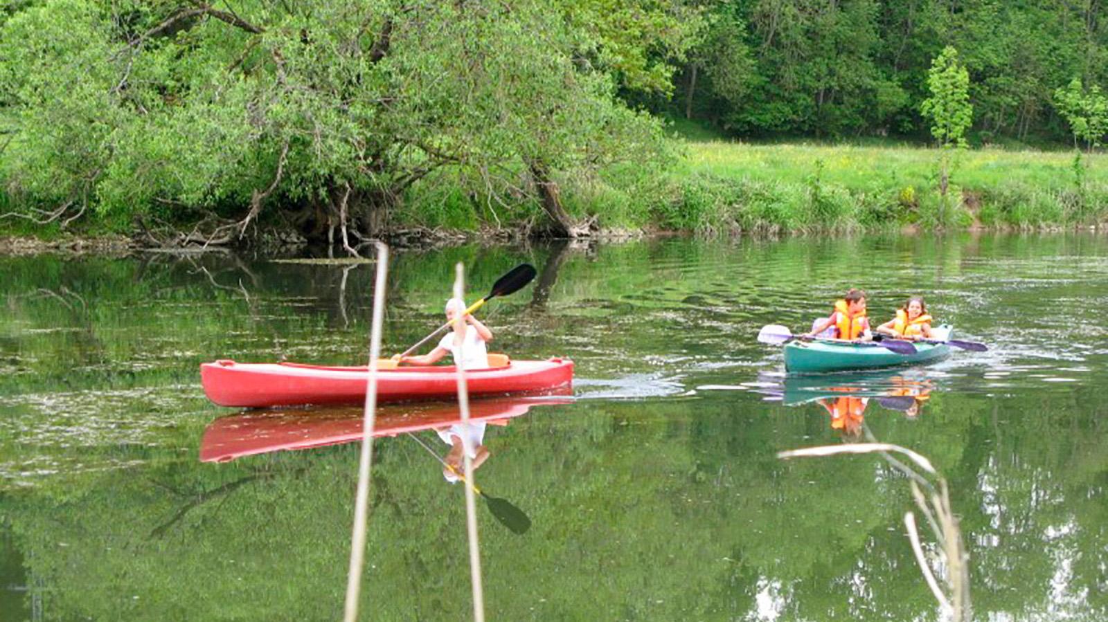 Kanu-Tour auf der Donau im Nationalpark für Kinder und Erwachsene...