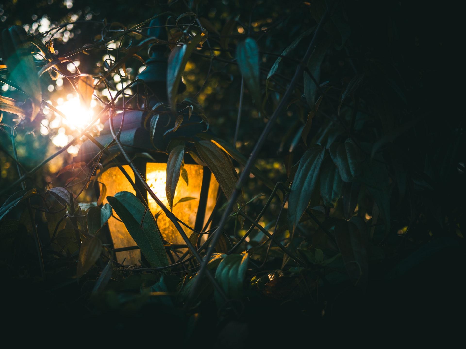 Hidden lantern