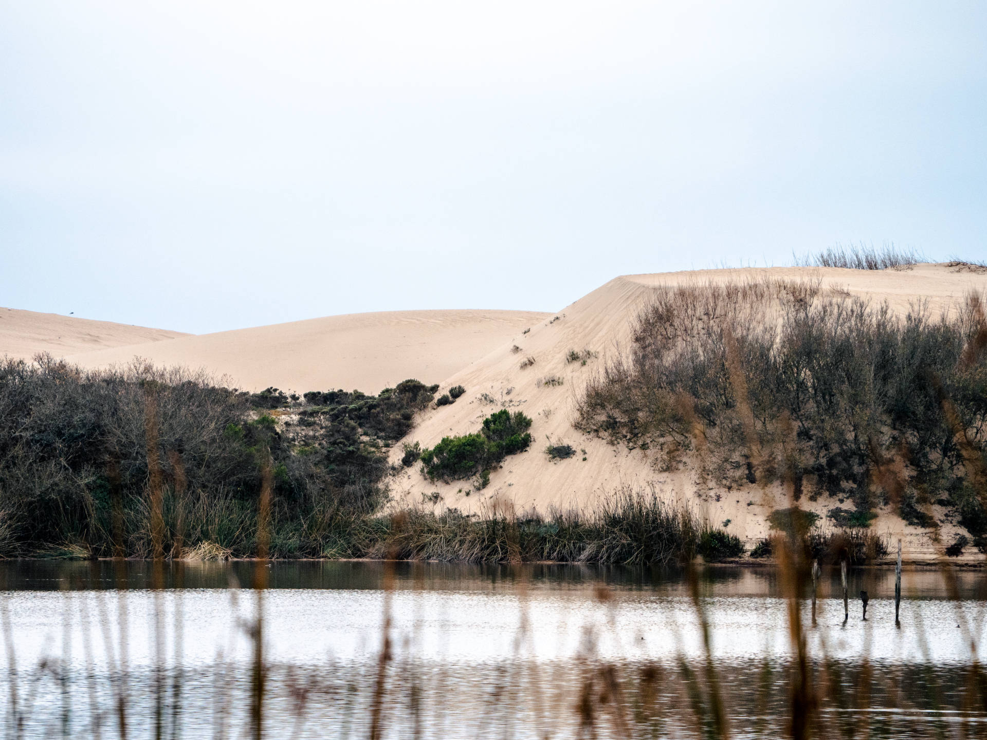San dunes in front of lake
