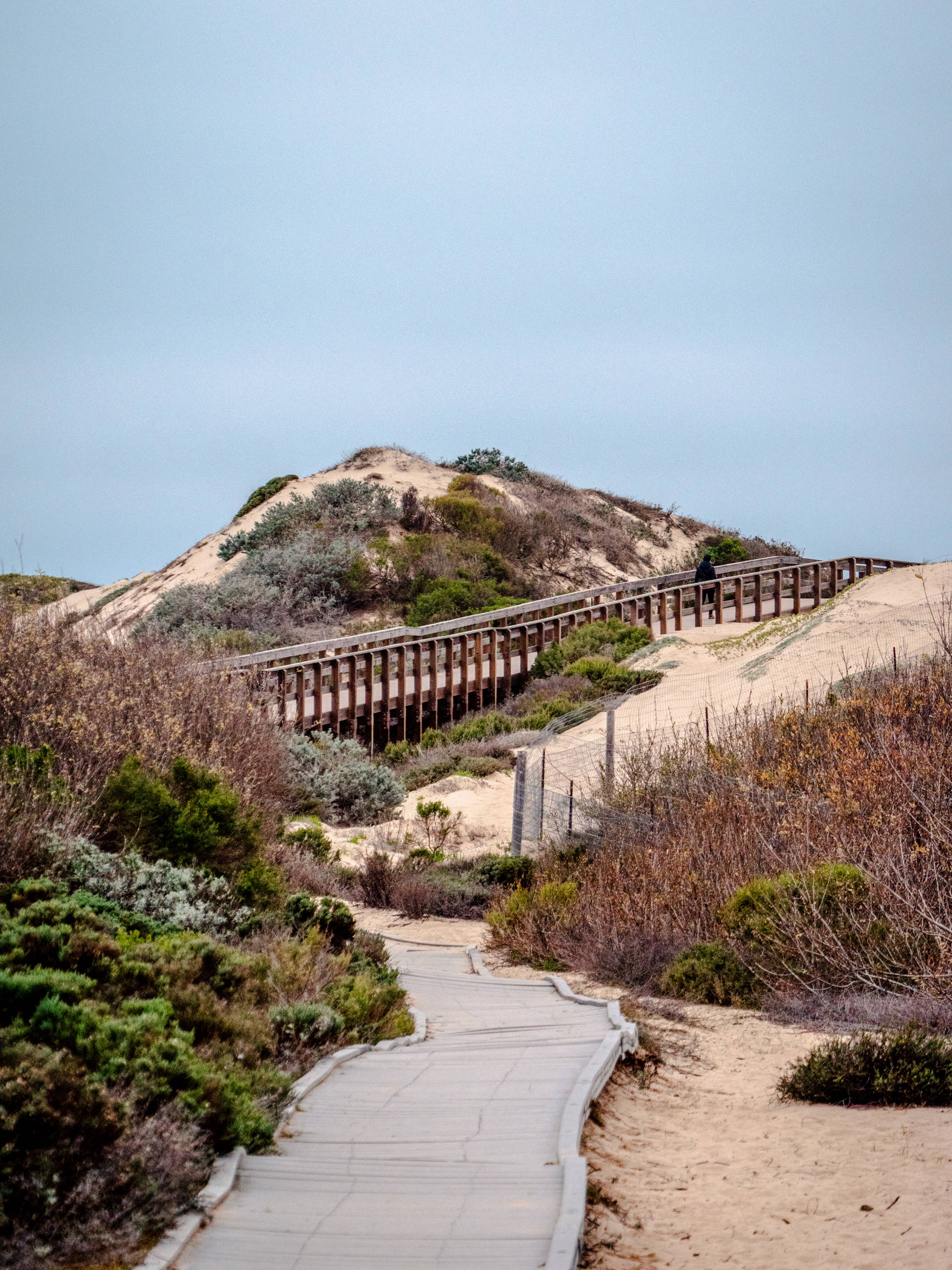 Board walk trail up sand dune
