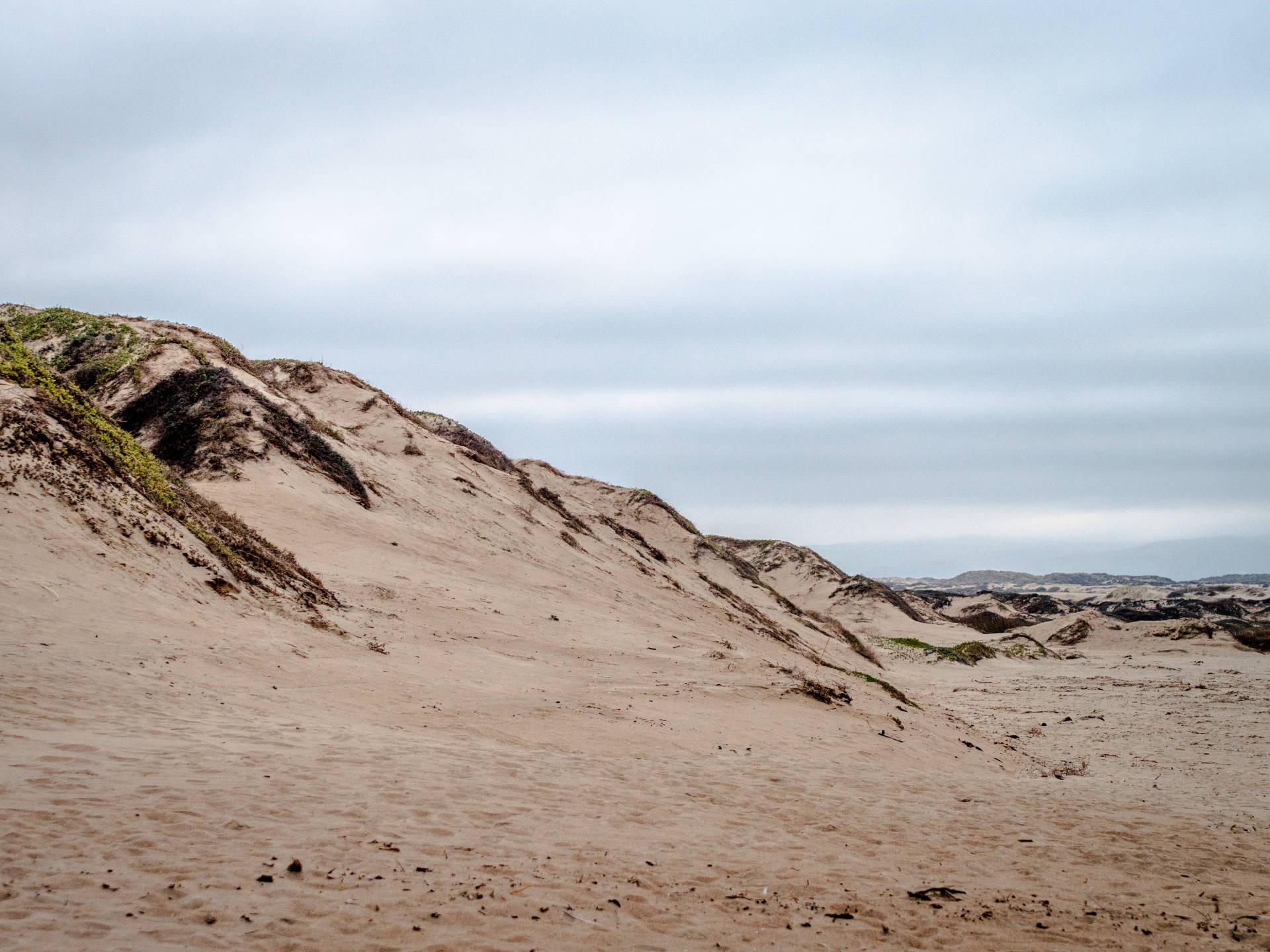 San Dunes on Beach