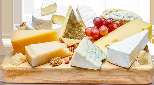 ختلف انواع الجبن الشيدر والموزاريلا والبارميزان والبوراتا والماسكربون والريكوتا