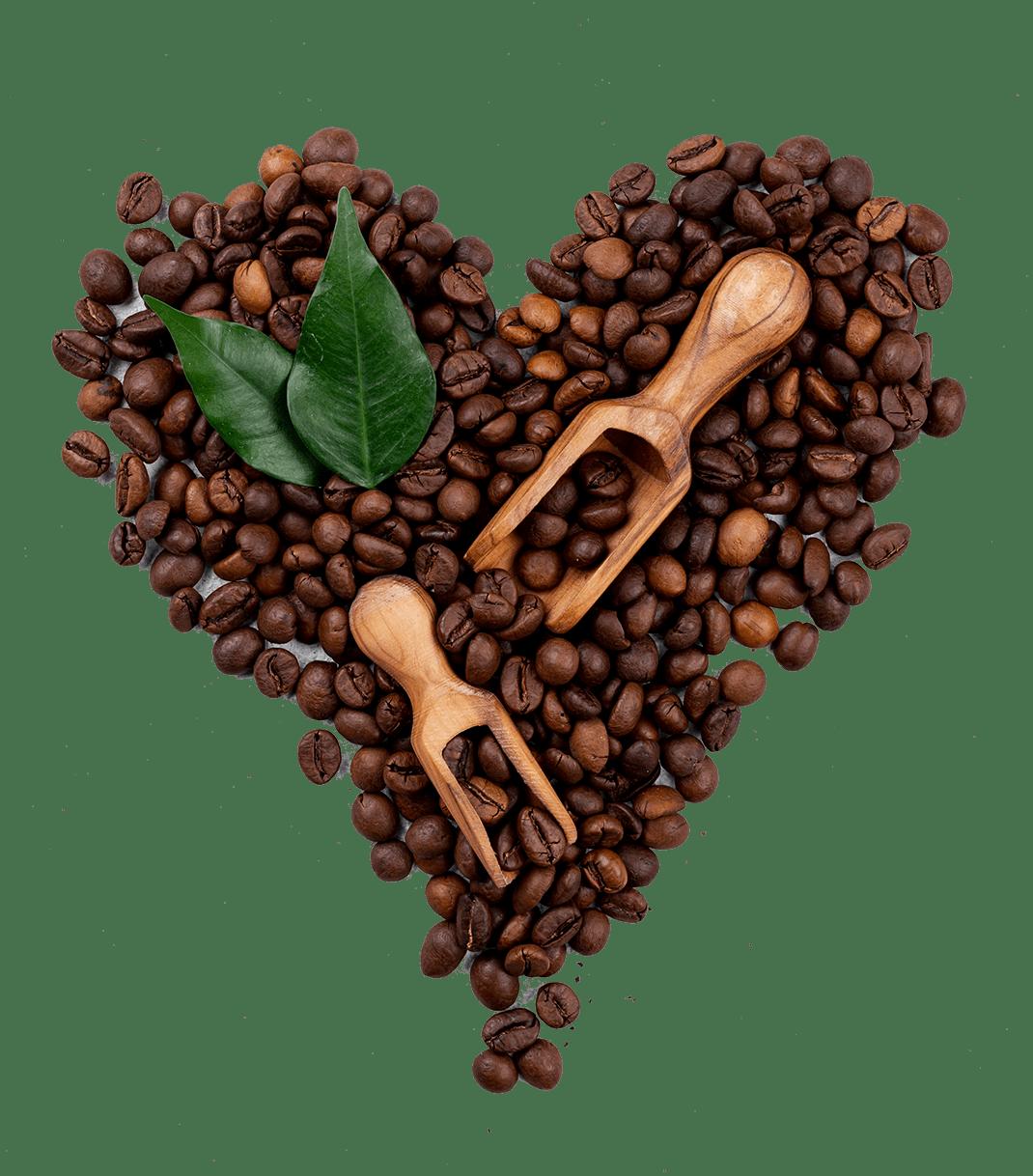 حب القهوة