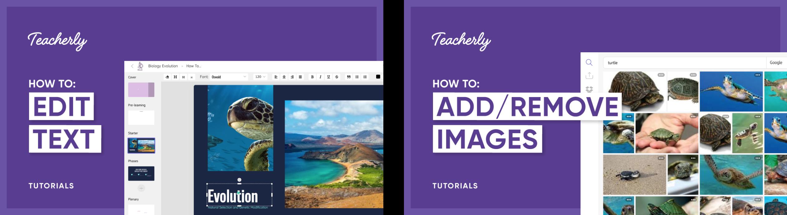 Brand Development & Web Design For Teacherly