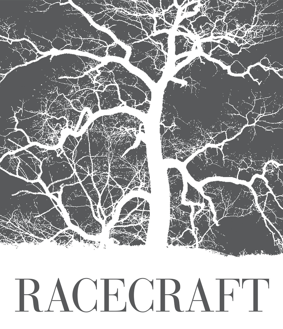 Book jacket for Racecraft: the Soul of Inequality in American Life by Barbara and Karen Fields