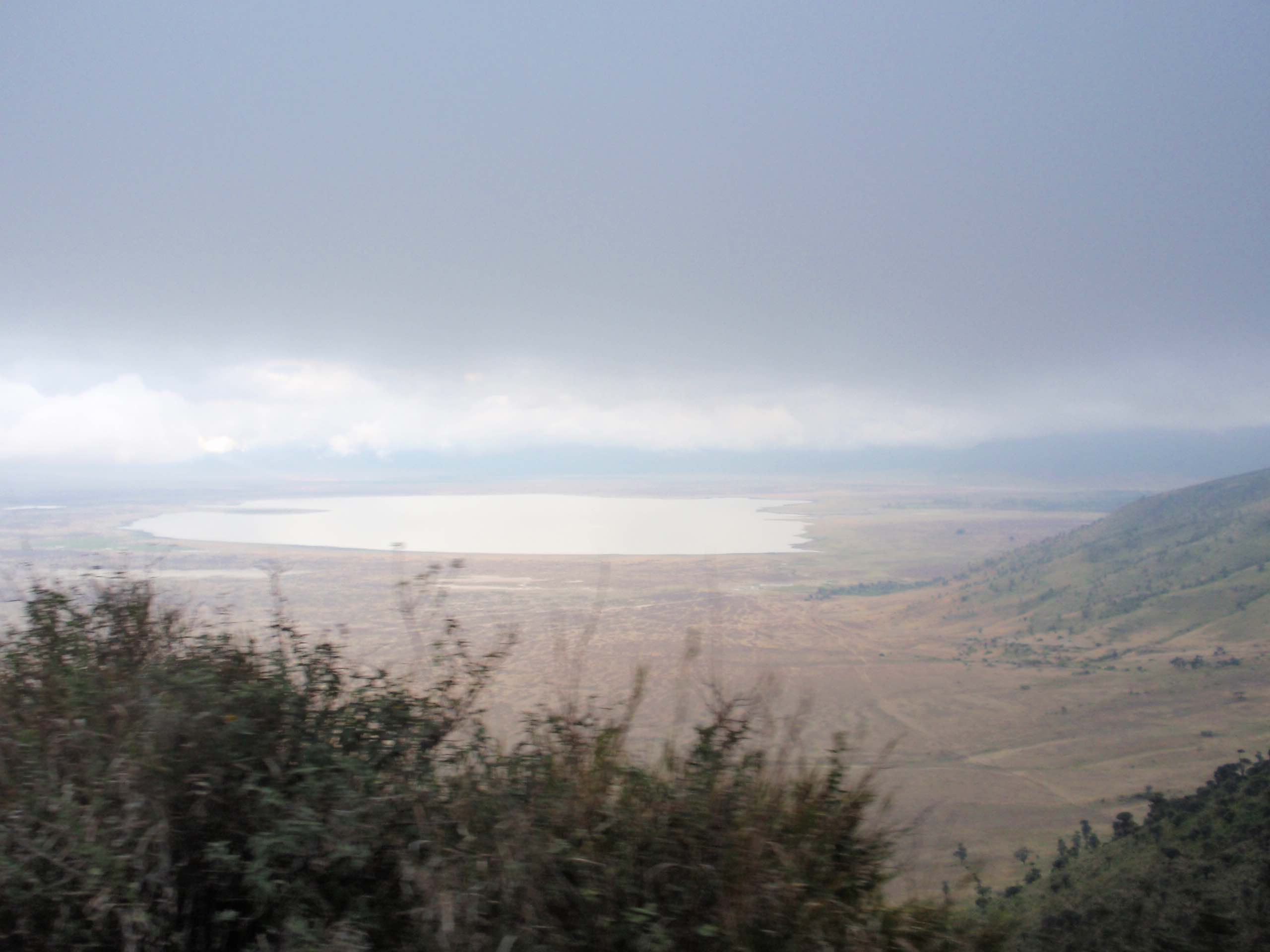 Wildlife Ngoro Crater