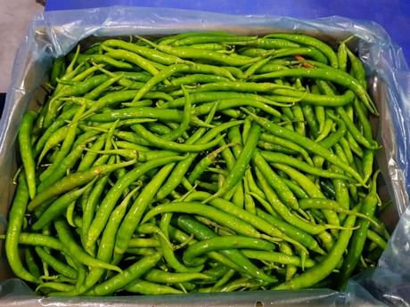 Chili processing packing chili powder manufacturing quality control inventory