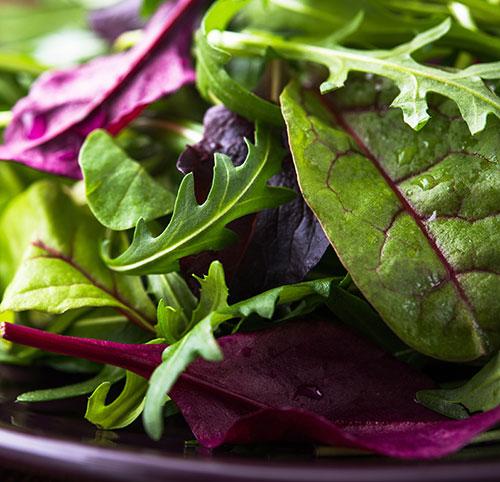 fresh produce label documentation