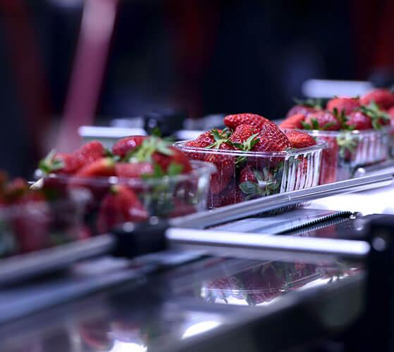 Integrate food scales API
