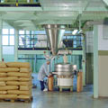 Spice production & manufacturing