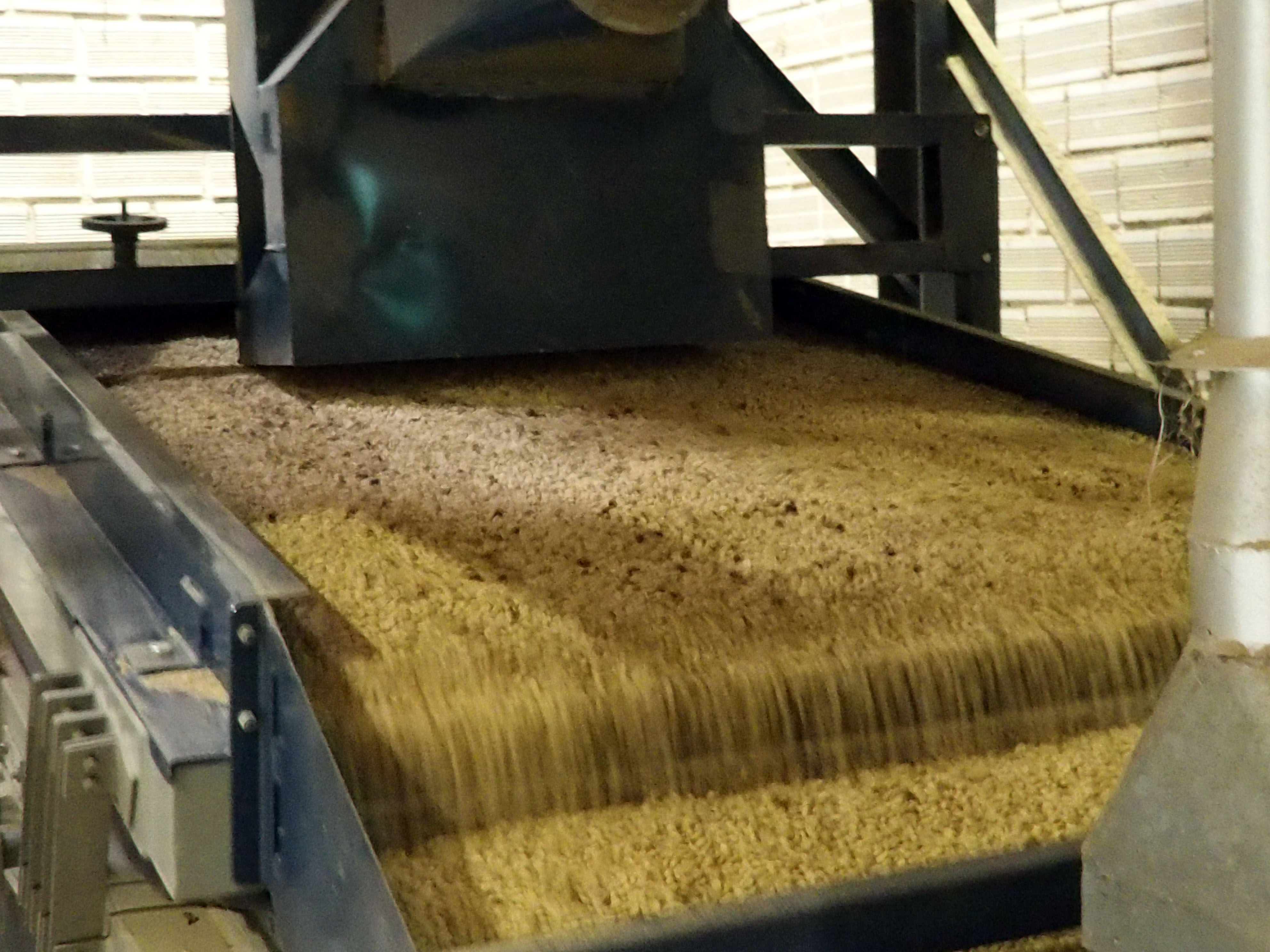 Processing coffee beans