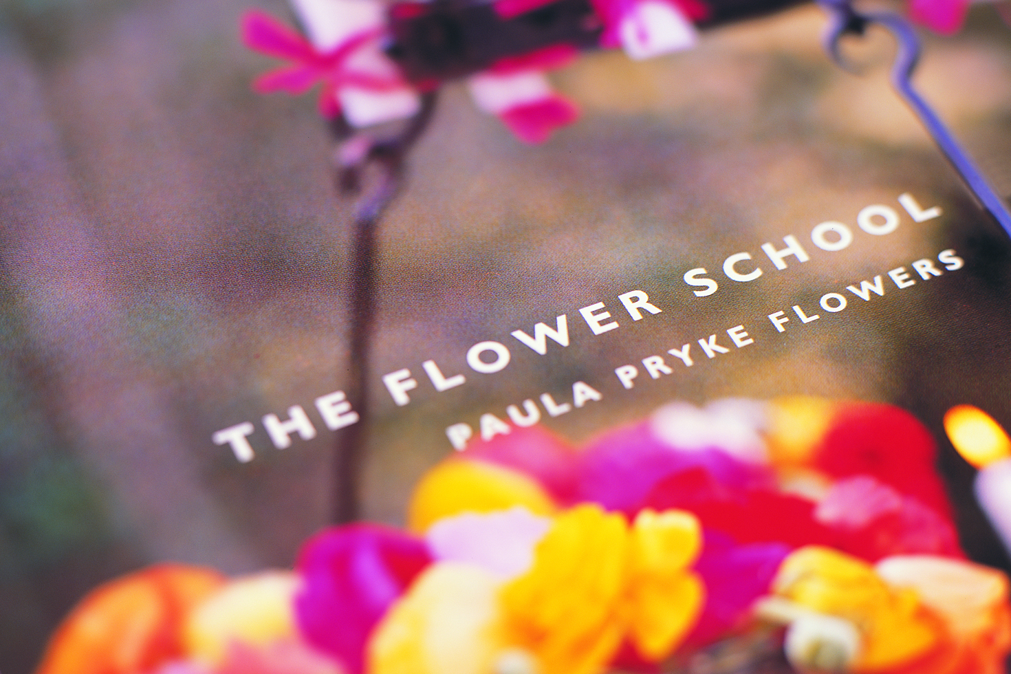Paula Pryke Flowers window