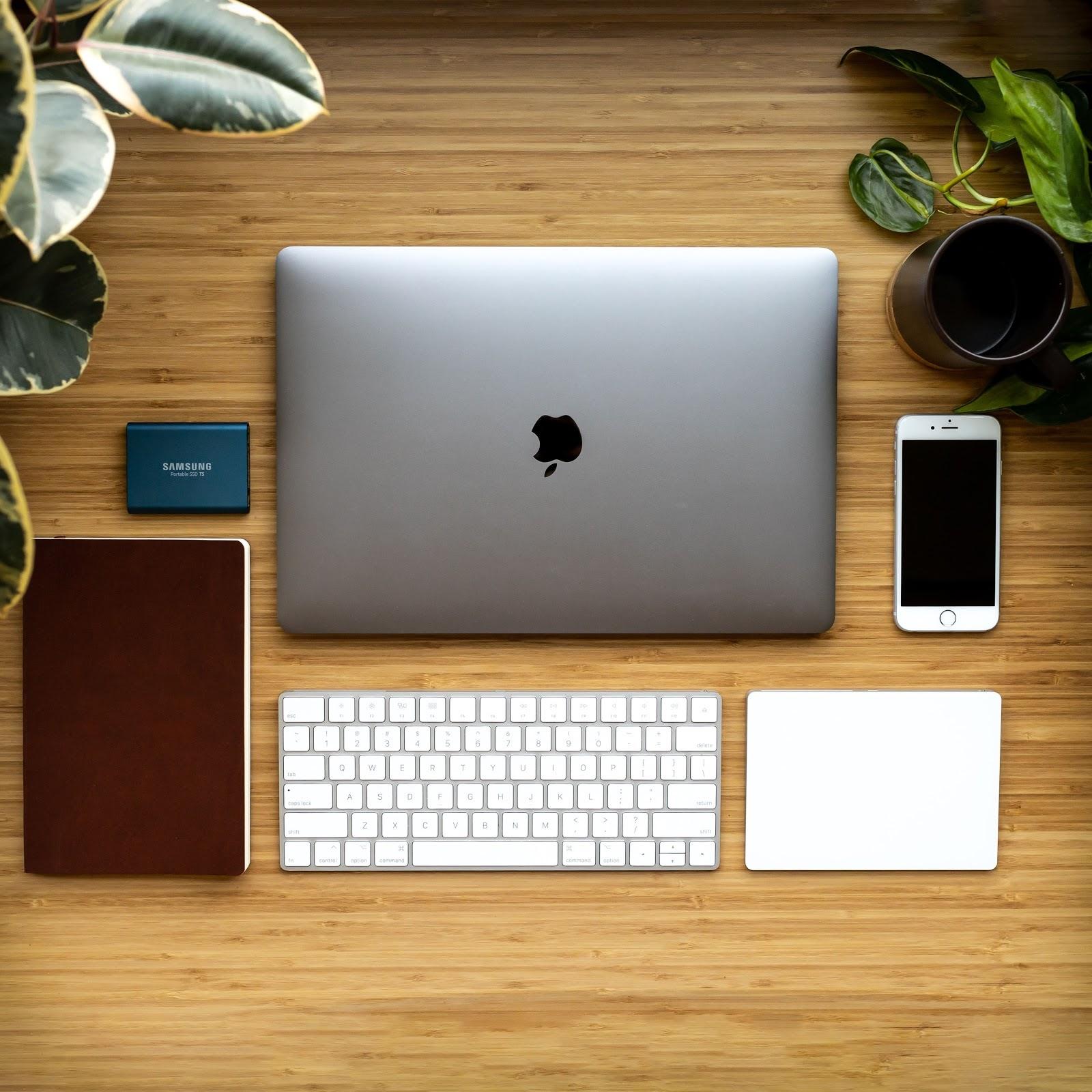 Plantes et ordinateur, clavier, téléphone posés sur une table en bois