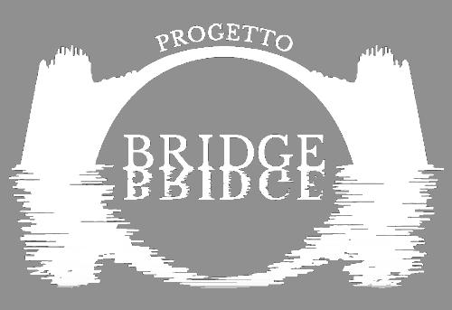 Progetto Bridge Icon Bianco