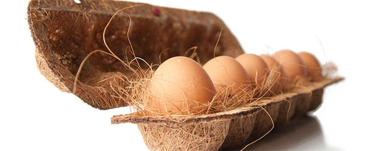 Eco-Friendly Packaging Material - Coconut shell