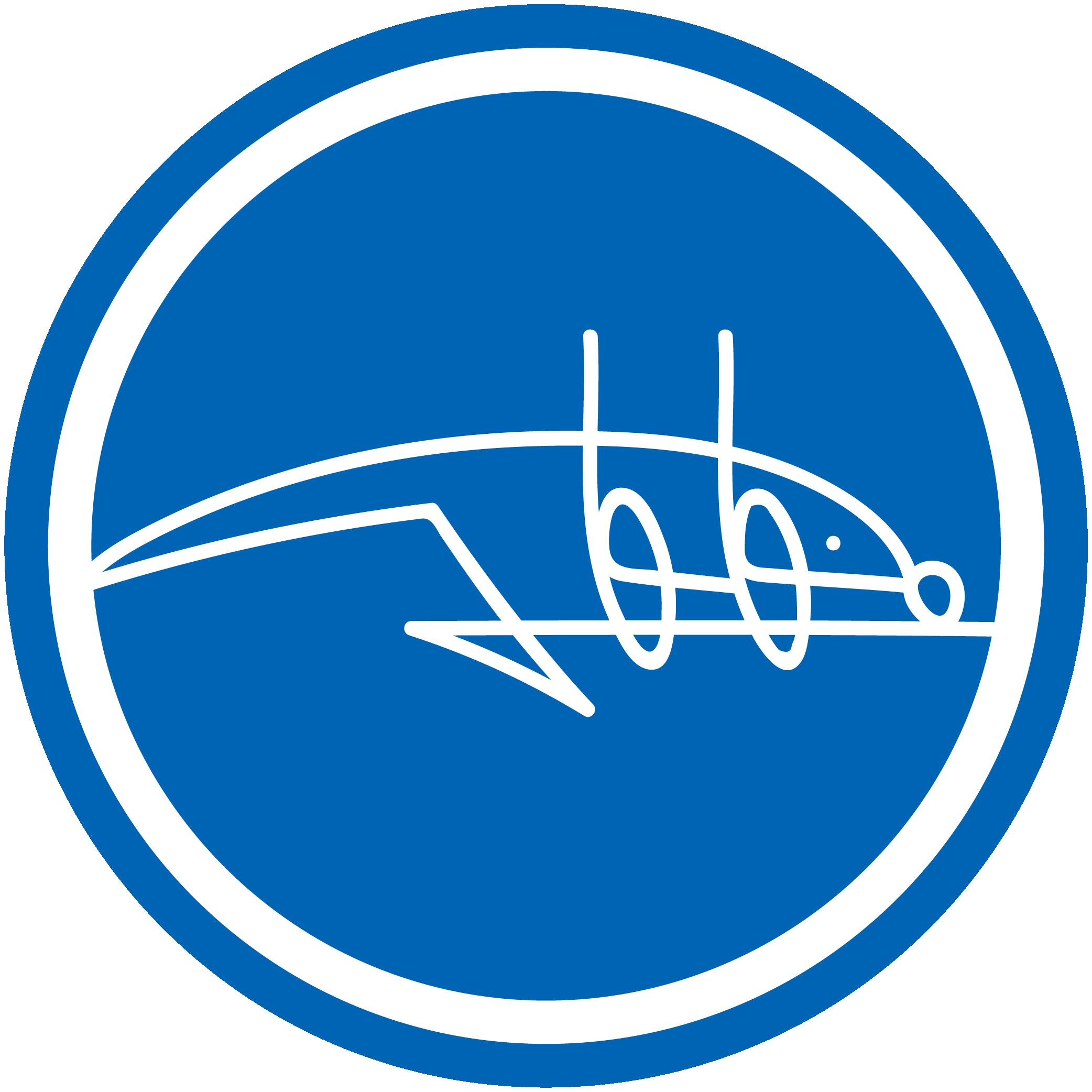 Icona design