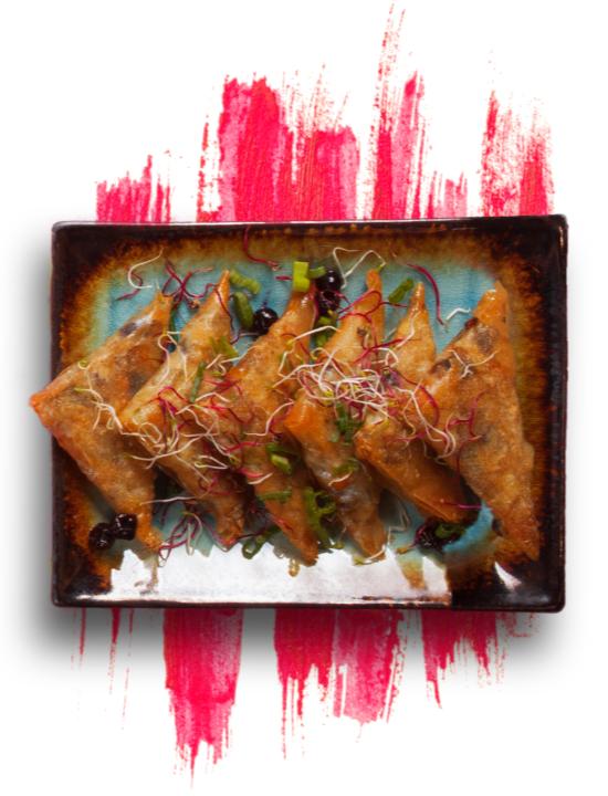 Samosa dish on painted background