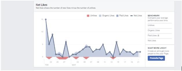 Net Likes breakdown in Facebook Insights