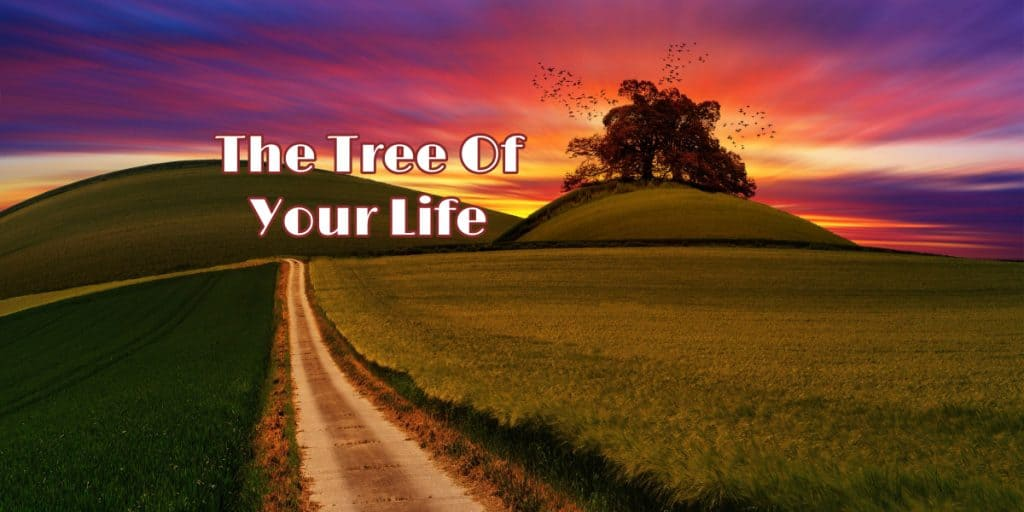 The Tree of Your Life