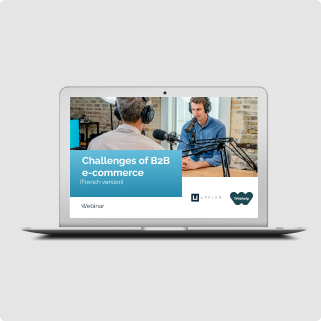 webinar about challenges of a b2b ecommerce software