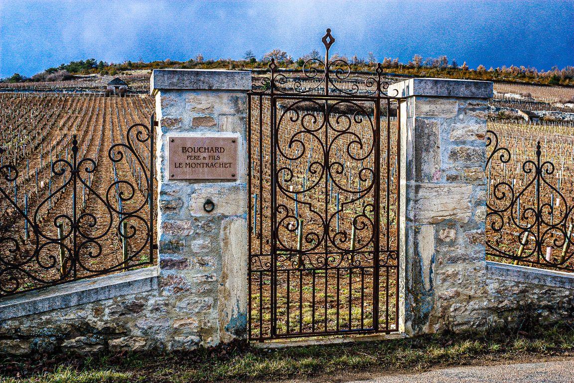 Le Montrachet vineyard gates