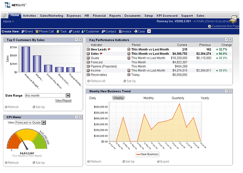 NetSuite ERP Dashboard