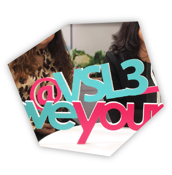 VSL3 cube cutout image