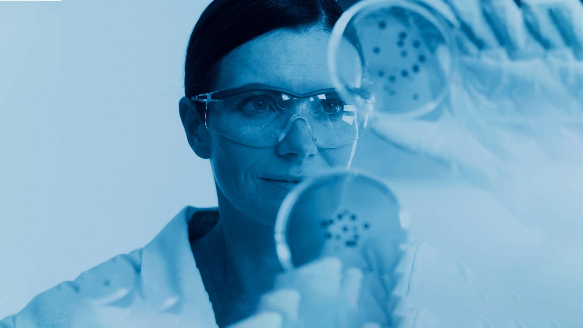 A scientist looking at a Petri dish