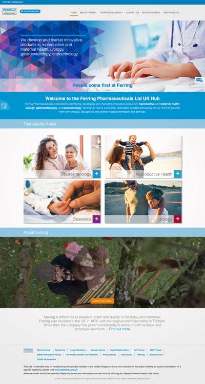 A website home page we've designed