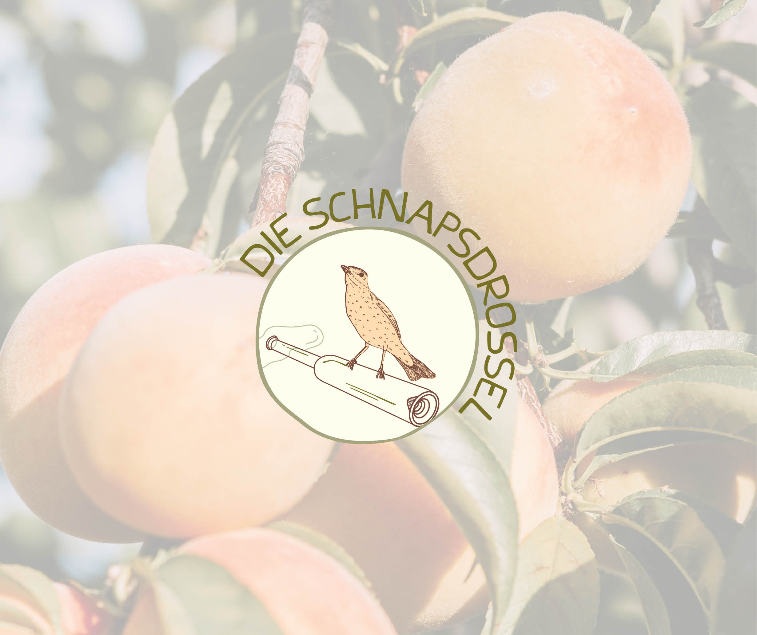 Schnapsdrossel brand identity - logo - by Magdalena Weiss