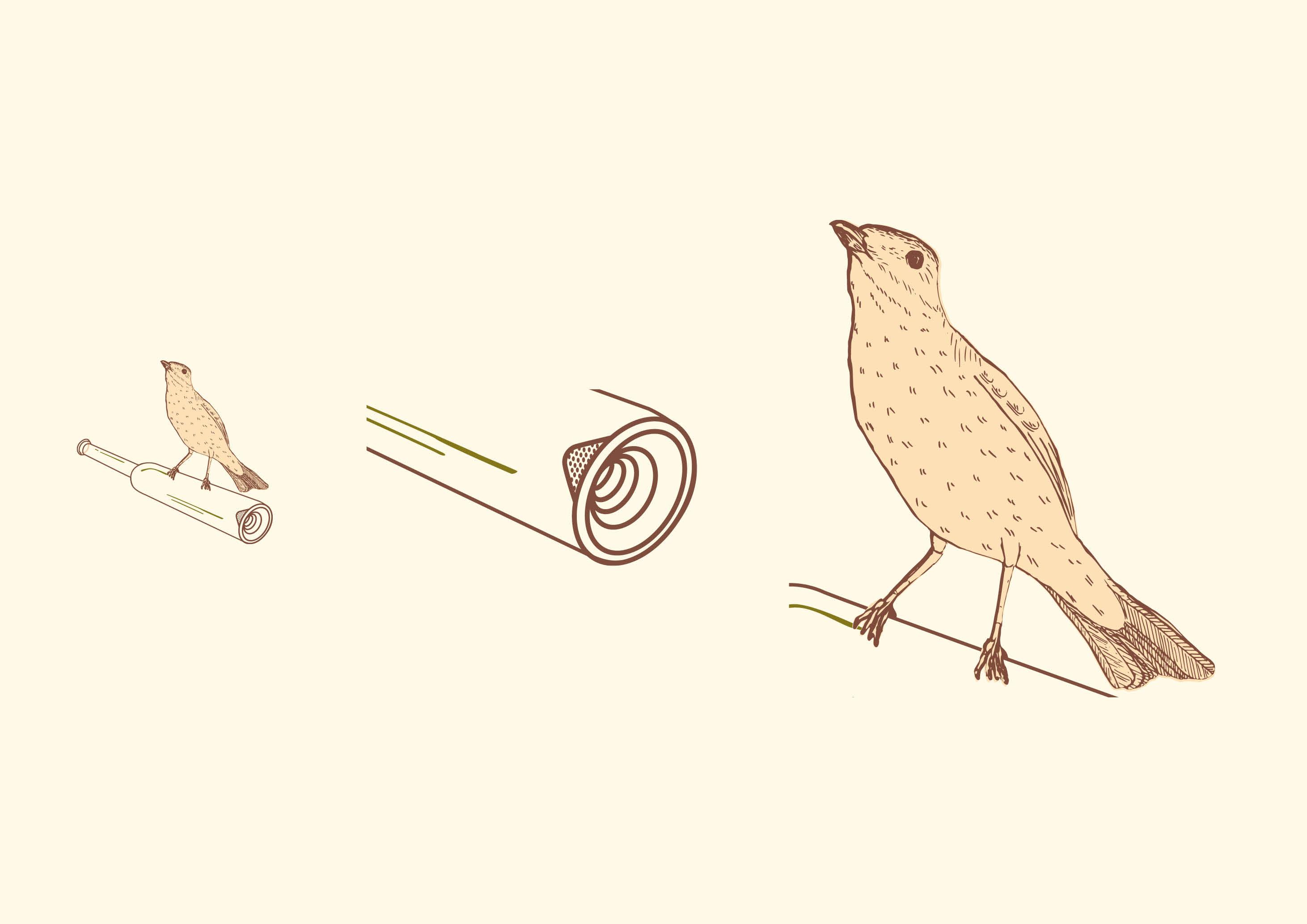 Schnapsdrossel brand identity - illustration - by Magdalena Weiss