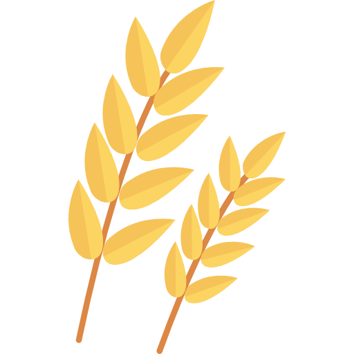 Adobe composé de fibres végétales