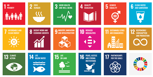graphic showing 17 sustainable development goals