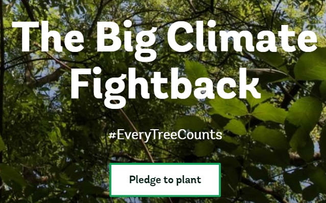 Woodland Trust - The Big Climate Fightback campaign