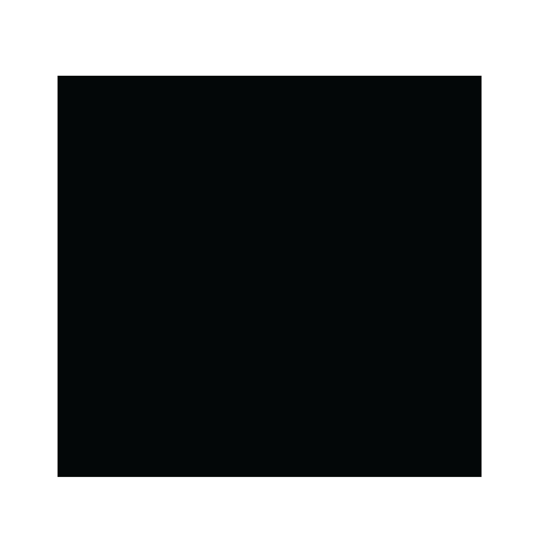 NOLA Studio Logo - sans-serif with script