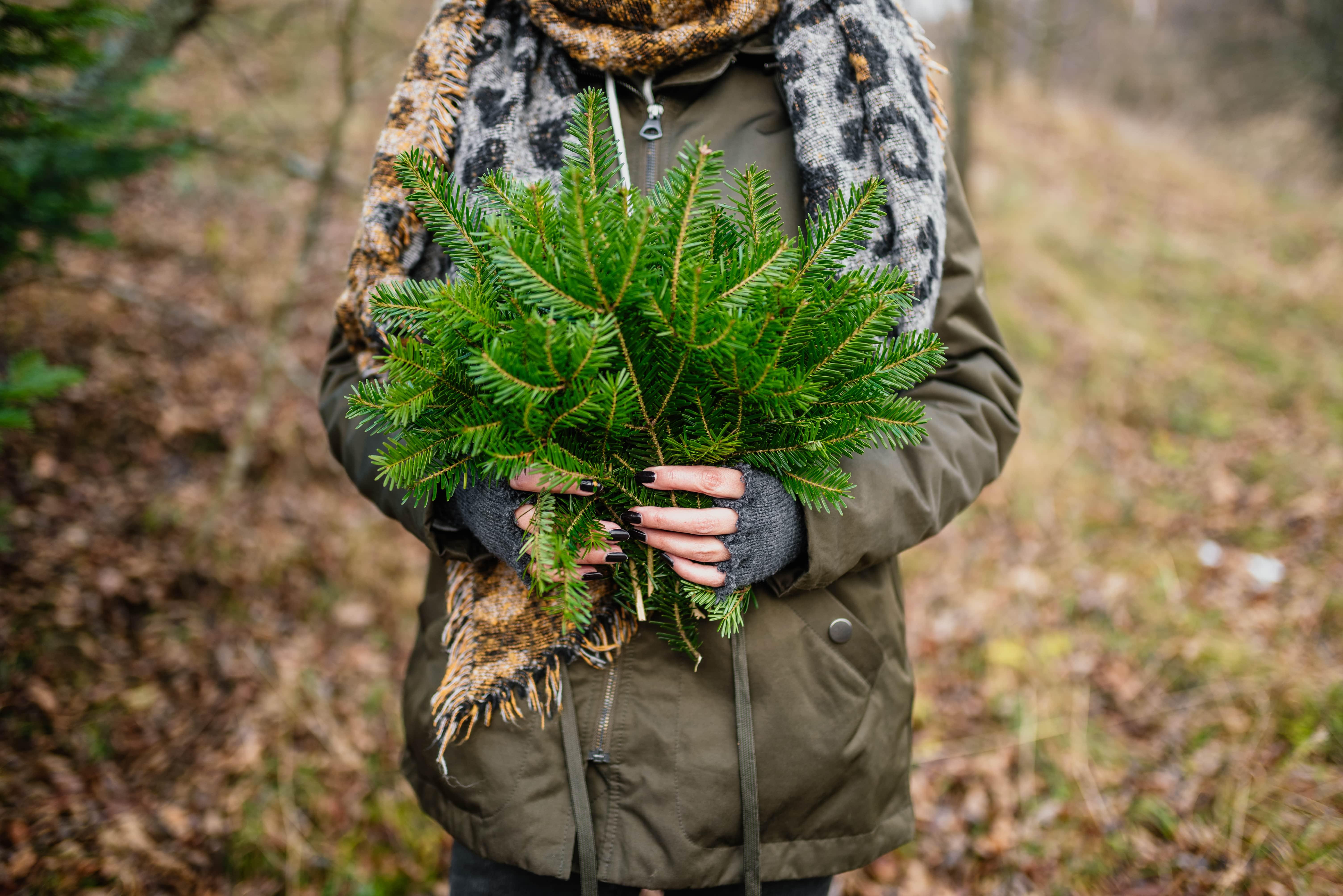 Kind mit Tannenzweigen im Wald