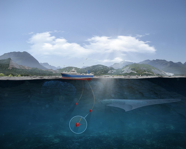 Eco Trawl