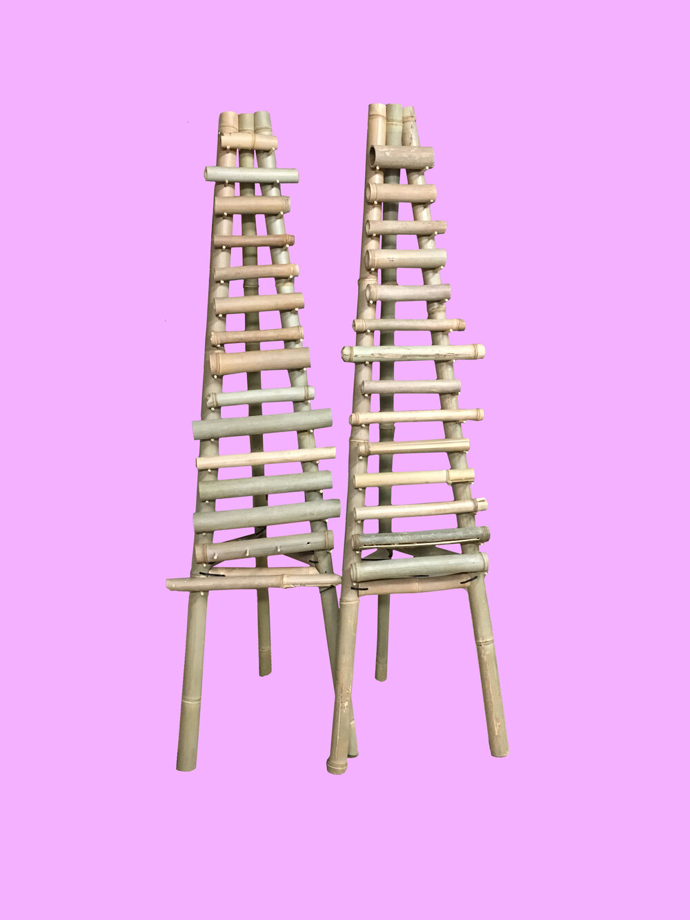 Cannula Racks on Pink from the Ontology of Intimacy