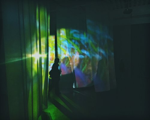 4th Floor to Mildness, 2016, Pipilotti Rist. Photo by Jacqueline Moulton