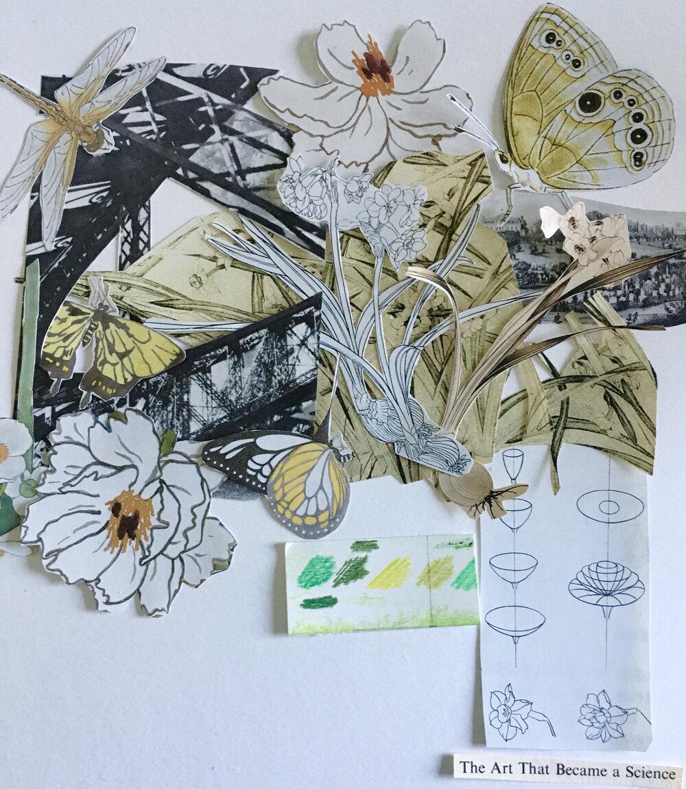The Art That Became a Science , Ephemeral Collage, Nandita Baxi Sheth, 2017.