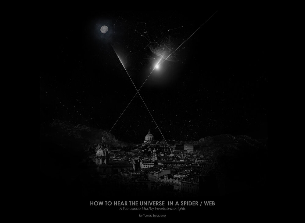 """""""How to Hear the Universe in a Spider Web""""  http://arachnophilia.net/events"""