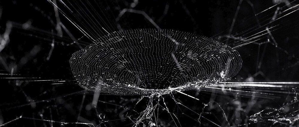 """Hybridwebs"" Tomas Saraceno  https://studiotomassaraceno.org/hybrid-webs/"