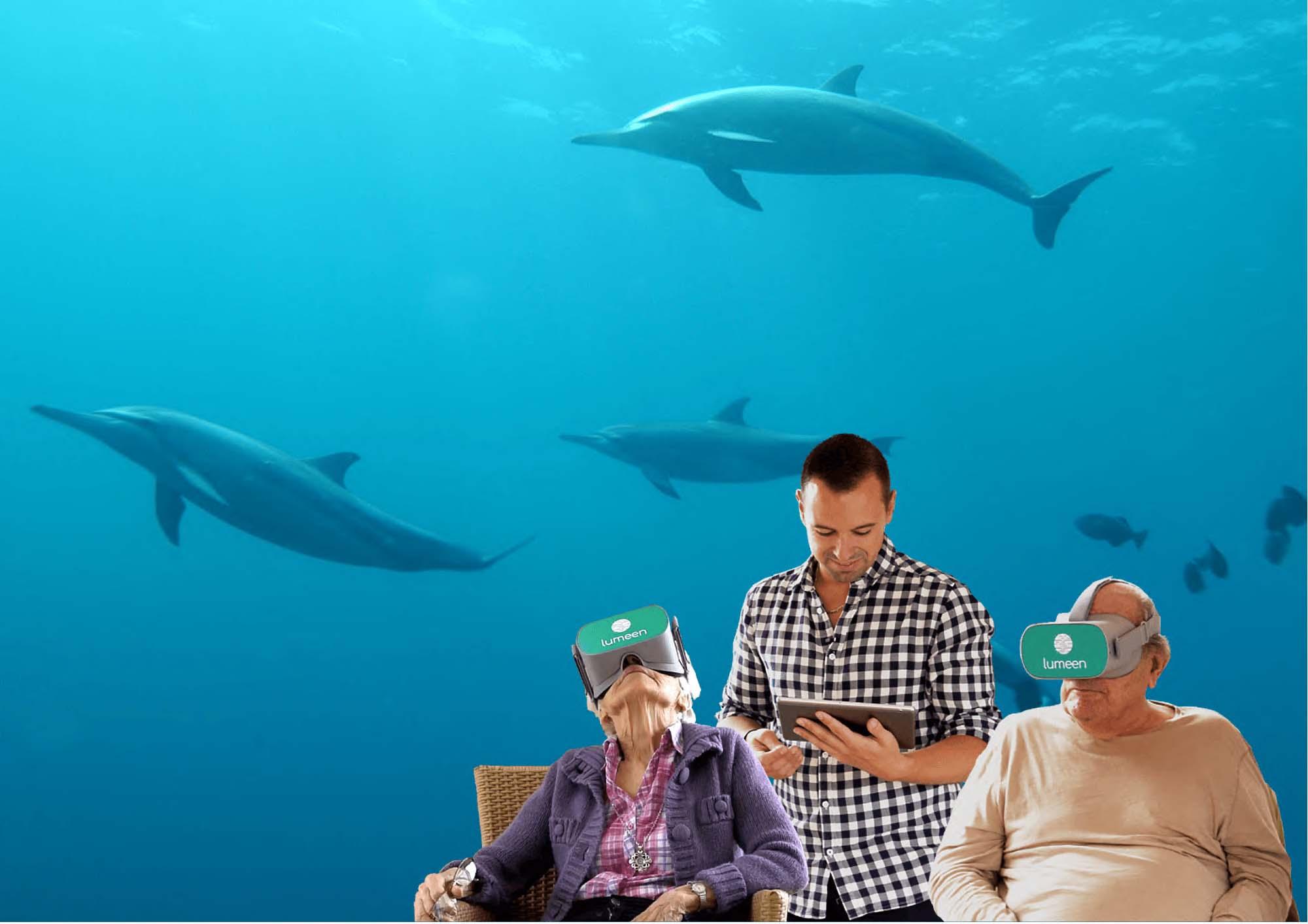 Immersion avec les dauphins