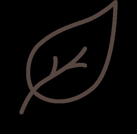 Icona della freschezza