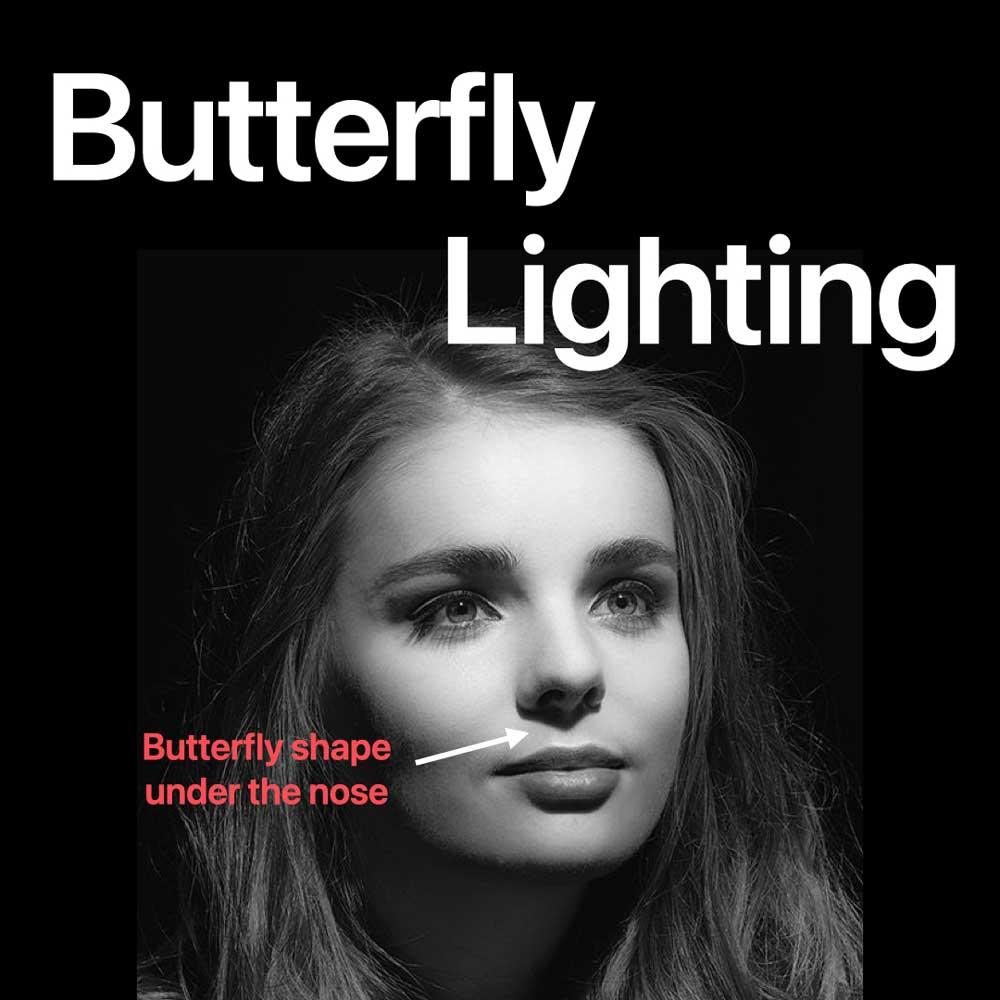 Butterly Licht Setup