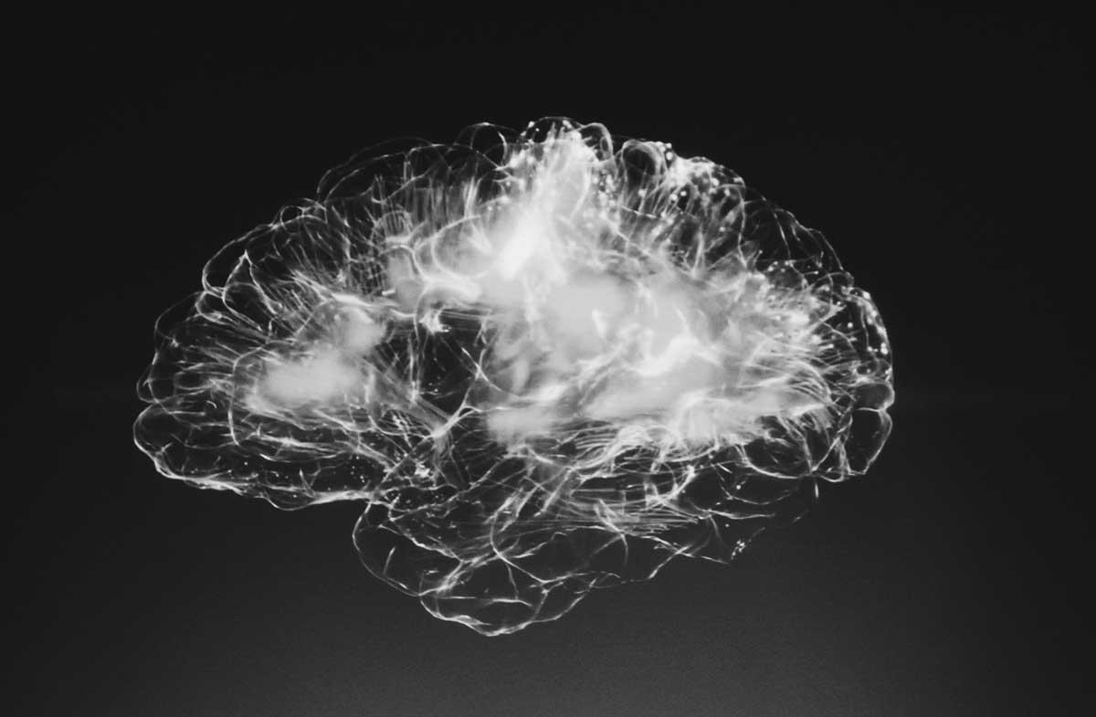 Ein Gehirn (Illustration)