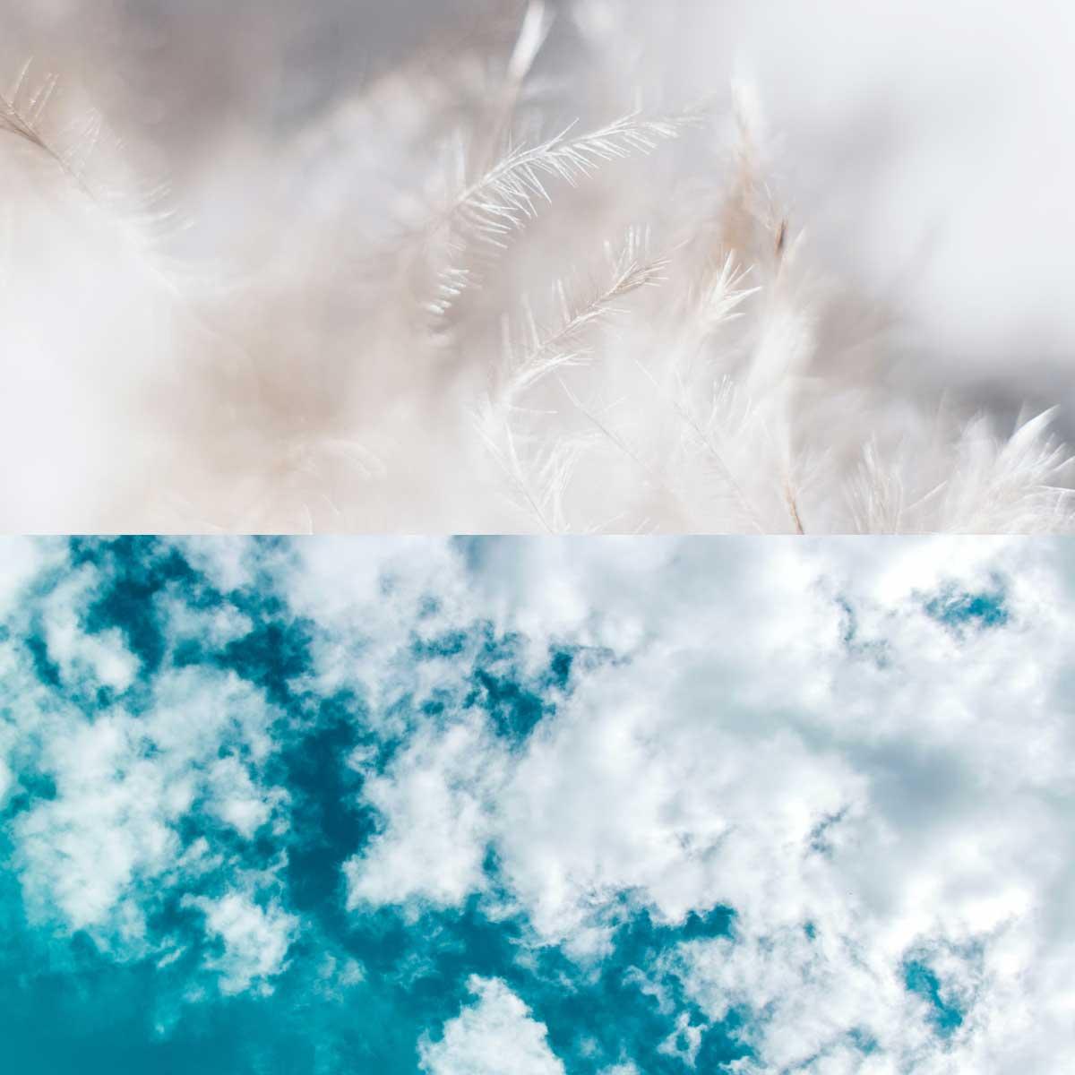 Federn und Wolken
