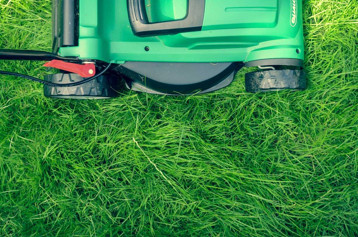 Ein Rasenmäher