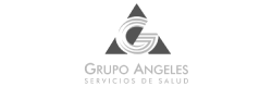 Grupo Angeles Servicios de Salud