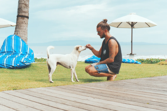Man crouching in front of a white dog at the beach